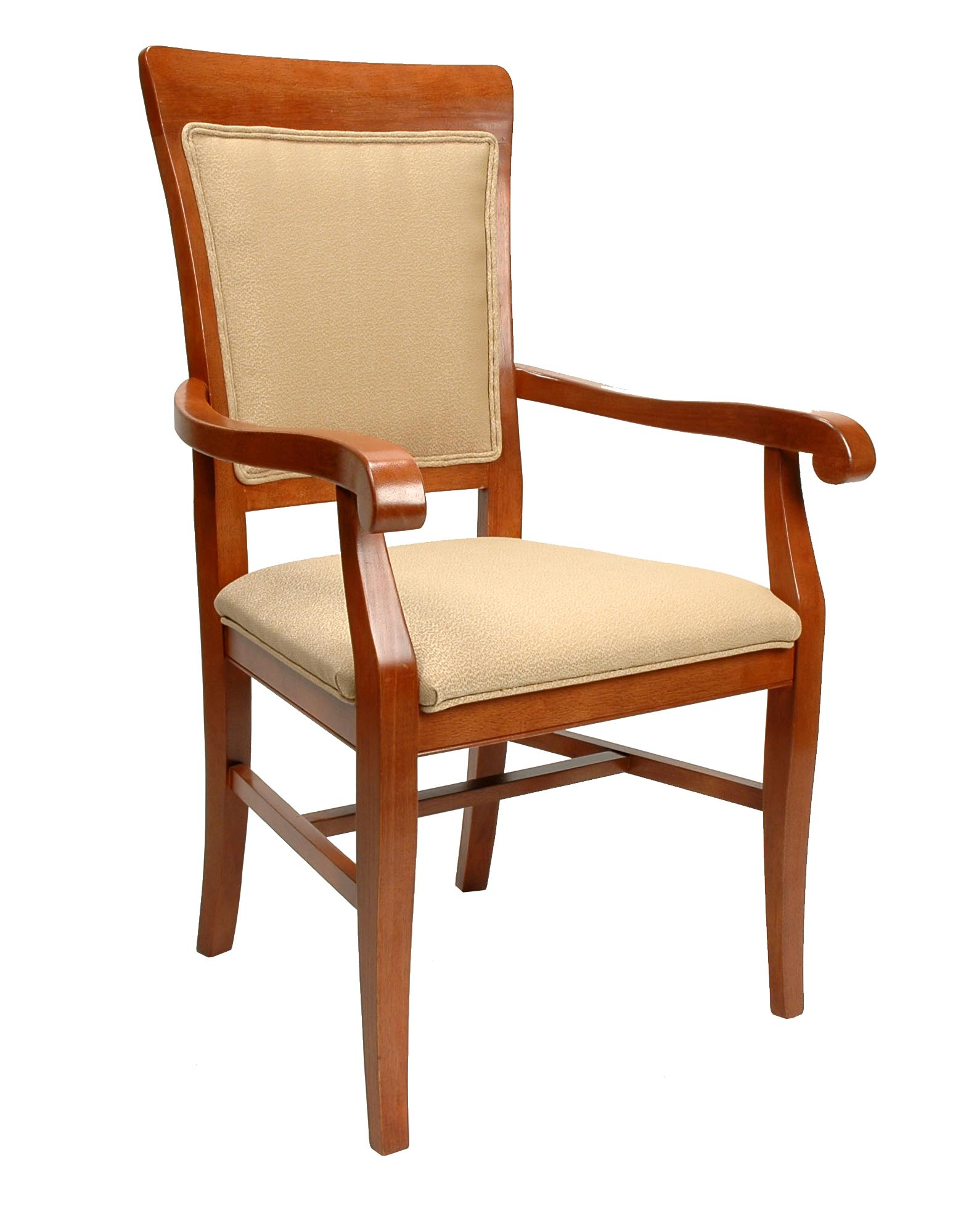 Contemporary Curved Arm Chair