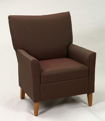Contemporary Lounge Chair - Removable Seat