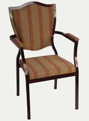 Steel Frame Chair 5600